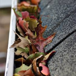Clogged gutters filled with fall leaves  in Summerfield